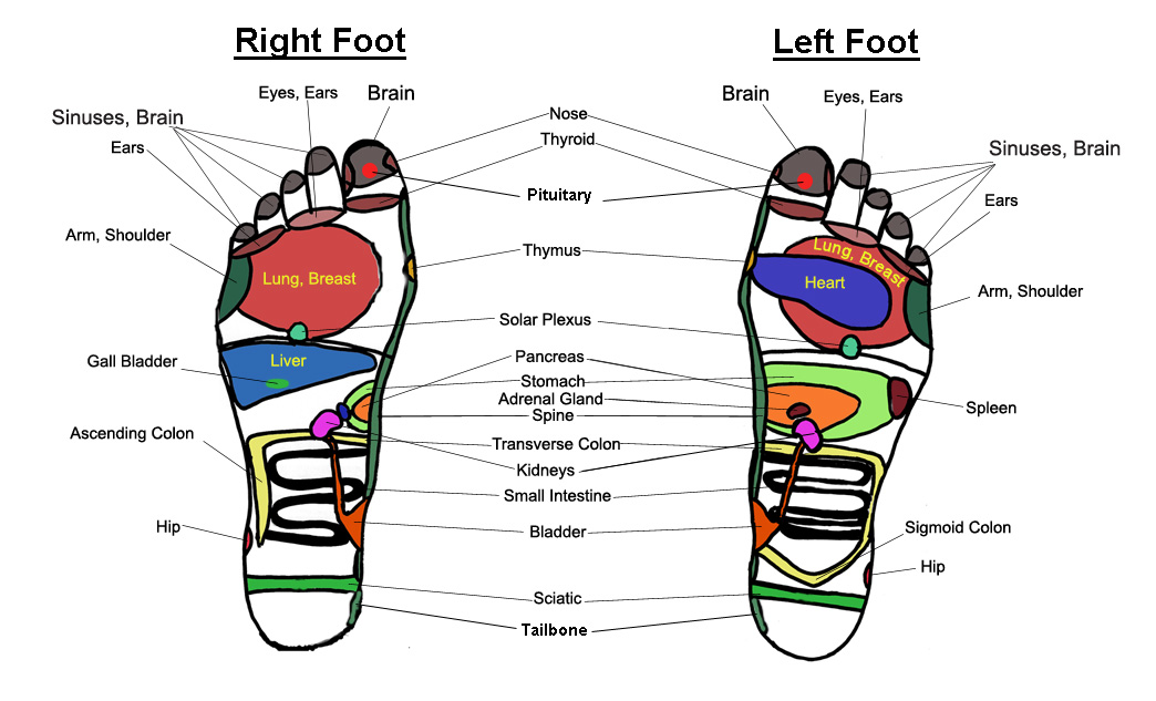 Foot massage chart reflexology charts